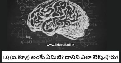 What is IQ Intelligent Quotient telugu